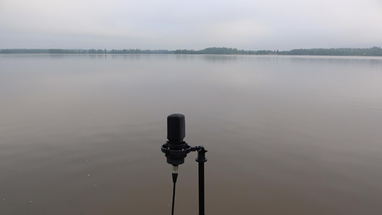Kuvassa yksinäinen mikrofoni Tuusulanjärven rannalla.
